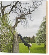 Amazing Stretching Exercise - Bmx Flatland Rider Monika Hinz Uses A Tree Wood Print