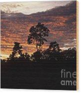 Amazon Sunset Wood Print