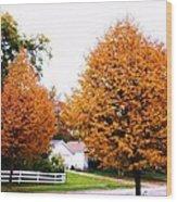 Amber Autumn Twins  Wood Print