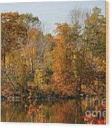 Amber Days Wood Print