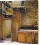 Amber Fort Wood Print