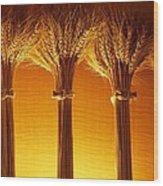 Amber Grains Wood Print
