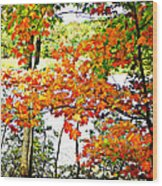 Amber Leaves  Wood Print by Dianne  Lacourciere