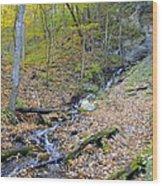Amber Malanaphy Springs Wood Print