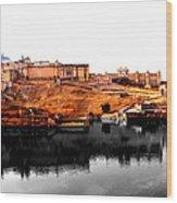Amber Palace - Jaipur- Viator's Agonism Wood Print