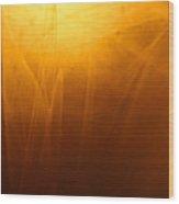Amber Shades Wood Print