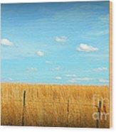 Amber Waves And Blue Skies Wood Print