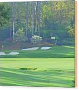 Amen Corner  Wood Print by Bo  Watson