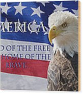 America Land Of The Free Wood Print