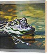 American Alligator 2 Wood Print