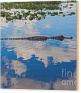 American Alligator Swimming Through The Clouds Wood Print