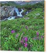 American  Basin Waterfall Wood Print