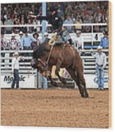 American Cowboy Riding Bucking Rodeo Bronc I Wood Print