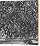 American Dream Drive 2 Bw Wood Print