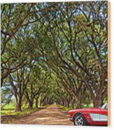 American Dream Drive 2 Wood Print