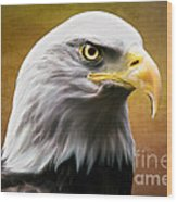 American Eagle Wood Print by Shannon Rogers