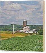 American Farmland 3 Wood Print