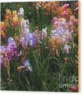 American Giverny Wood Print