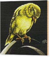 American Gold Finch Wood Print