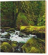 American Jungle Wood Print by Chad Dutson