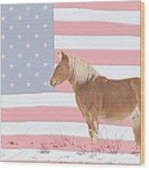 American Palomino Wood Print