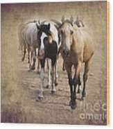American Quarter Horse Herd Wood Print by Betty LaRue