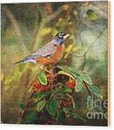 American Robin - Harbinger Of Spring Wood Print