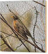 American Robin On A Branch Wood Print