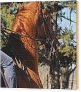American Saddlebred Horse Head Shot Wood Print