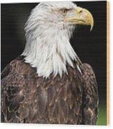 American Symbol Wood Print