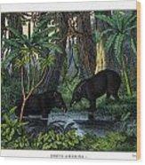 American Tapir Wood Print