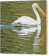 American White Pelican On A Lake Wood Print