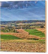 America's Heartland Wood Print