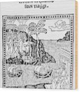 Amerigo Vespucci, 1505 Wood Print