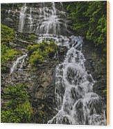 Amicola Falls Wood Print