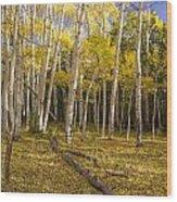 Amid The Aspens Wood Print