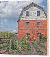 Amish Barn And Garden Wood Print