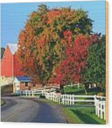 Amish Barn In Autumn Wood Print