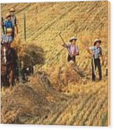 Amish Boys Wheat Harvest  Wood Print