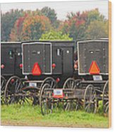Amish Buggies 2 Wood Print