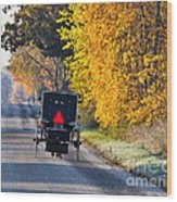 Amish Buggy And Yellow Leaves Wood Print