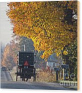 Amish Buggy Fall 2014 Wood Print