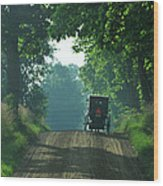 Amish  Buggy Gravel Road Wood Print