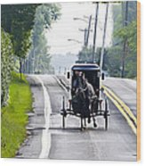 Amish Buggy In Lancaster County Pa. Wood Print