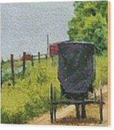 Amish Buggy In Ohio Wood Print