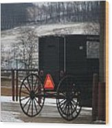 Amish Buggy In Winter Wood Print