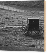 Amish Buggy Wood Print