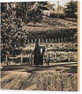 Amish Buggy On A Country Road Wood Print