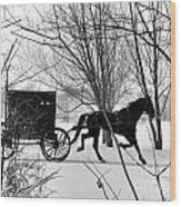 Amish Buggy Revised Wood Print