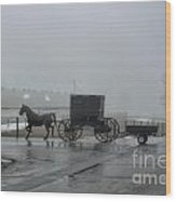 Amish  Buggy Winter Day Wood Print
